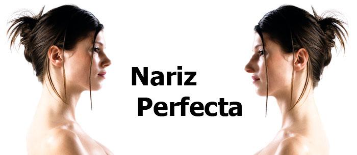 Nariz Perfecta