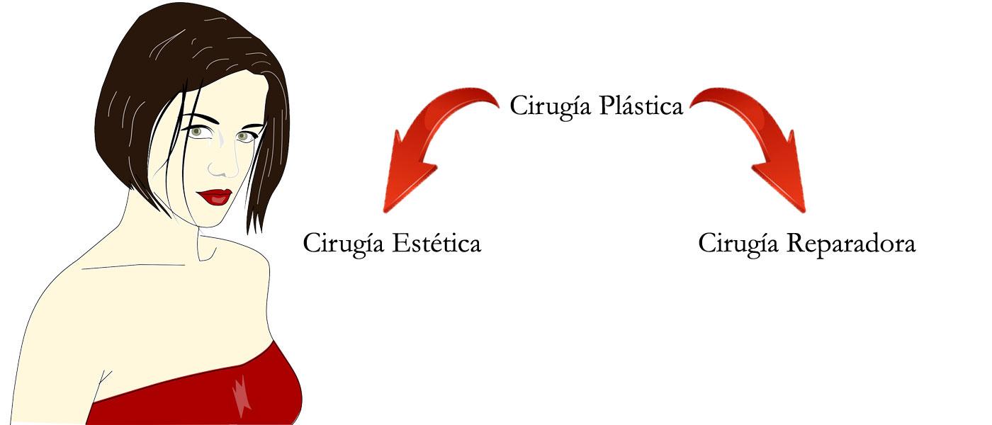 Cirugía Plástica, Cirugía Estética y Cirugía Reparadora