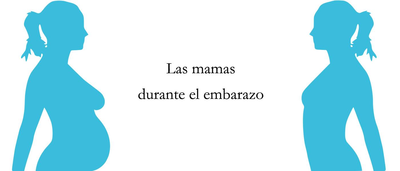 Las mamas durante el embarazo